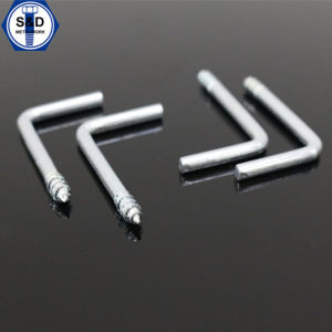 Zinc Plated L Type Wood Screw pictures & photos