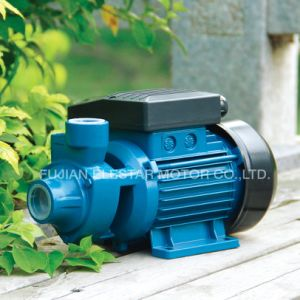 ISO Certificate Jet-P Series Water Pump for Garden pictures & photos