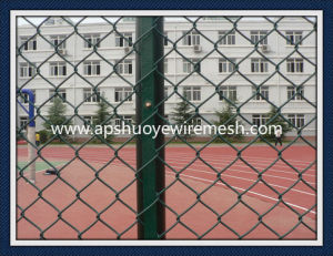 Galvanized Wire Chain Link Fence pictures & photos