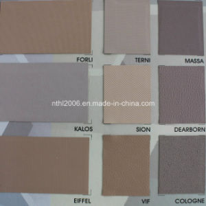 PVC Film for Car′s Inner Decoration (HL041-5) pictures & photos