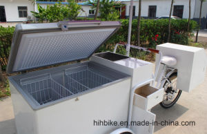 Fashion Freezer Trike Outdoor Use pictures & photos