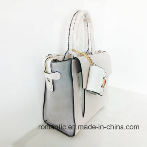 Brand Designer Trendy Women PU Suede Handbags (NMDK-051602) pictures & photos