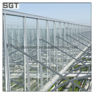 4mm Clear/Ultra Clear Solar Glass with Ce/as USD for Farming & Greenhouse Glass pictures & photos