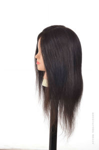 100% Human Hair-Training Head Lesson Head pictures & photos