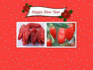 Medlar Goji Berries Chinese Wolfberry Himalayan Goji Berry pictures & photos