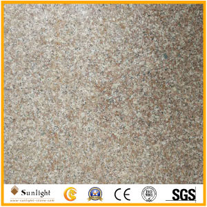 New G664 Popular Polished Chinese Granite Tiles/Slabs Paving Stone pictures & photos