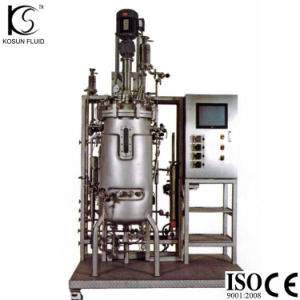 Stainless Steel Fermentation Bioreactor Tank pictures & photos