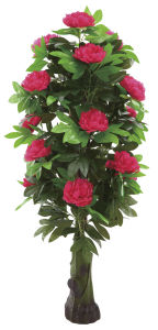 Hot Sale Artificial Silk Peony Flowers Tree for Decoration pictures & photos