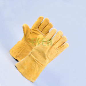 Safety Driving Gloves, Cow Leather, Goat Leather Gloves pictures & photos