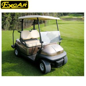2017 Two Seater Electric Golf Cart with Caddie Plate pictures & photos