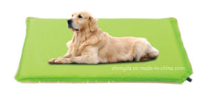 Folding and Self-Inflating Pet Mat for Water Infuse pictures & photos