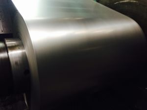 Galvanized Steel Coil (SGCC, DX51D, ASTM A653) pictures & photos