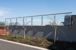 Stainless Steel Balustrade Tempered Glass Fence pictures & photos