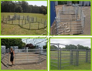Livestock Panel Fencing Horse Panel Fence Horse Gate Horse Corral Fencing pictures & photos