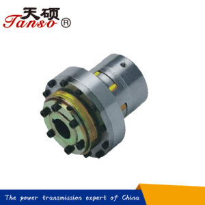 Tanso Flexible Safety Coupling with Torque Limiter pictures & photos