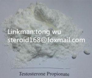 Raw Powder Testosterone Propionate/ CAS: 57-85-2 pictures & photos