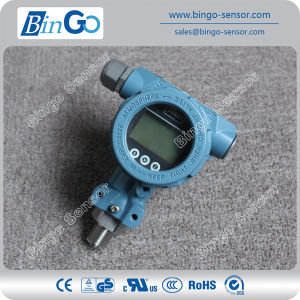 Hart Protocol Pressure Transducer Indicator with LCD Display for Air Gas pictures & photos
