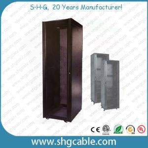 42u Rack Network Server Cabinet (NSC-19) pictures & photos