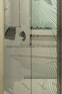 Decorative Etching Stainless Steel Elevator Door Panel Decoration pictures & photos