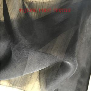 Silk Organza Fabric, Raw Silk pictures & photos