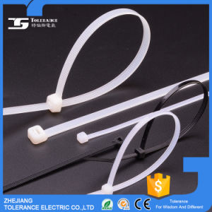 PA66 Manufacture Fastener Cable Tie