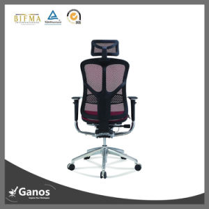 Foshan Factory Made Manager Mesh Chairs pictures & photos