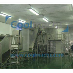 Soybean Quick Freezing Production Line/Vegetable IQF Freezing Production Line pictures & photos