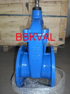 Cast Iron Resilient Gate Valve Pn10 Pn16 Pn25 pictures & photos