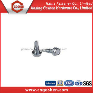 Hot Sale Hexagon Washer Head Self-Driling Screws pictures & photos