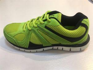 Mesh Casual Shoes Sport Ladies Hot Sale Good Quantity pictures & photos