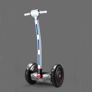 2017 Standing Seg Way Two Wheels Electric Skateboard with Handle pictures & photos