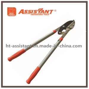 Compound Anvil Tree Loppers with Extendable Handles pictures & photos