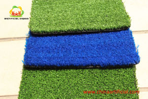Cricket Grass for Indoor Sports No Toxic Smell with SGS Certification pictures & photos