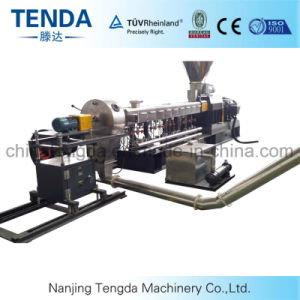 CE Complete Tsh-65 Hot Cutting Twin Screw Extruder pictures & photos