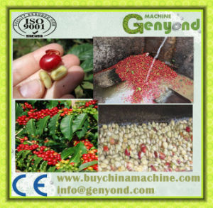 Electricity Type Green Coffee Bean Peeling Machine pictures & photos