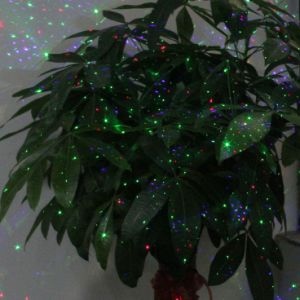 New Products 2016 IP 65 Waterproof Outdoor Christmas Laser Light Star Projector pictures & photos