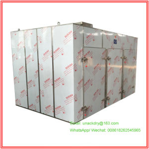 Hot Air Drying Oven for Vegetable/ Herbal pictures & photos