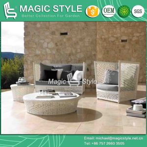 Morden Rattan Sofa Leisure Wicker Sofa Flower Weaving Sofa (Magic Style) pictures & photos