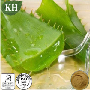 2015 Hotsell Solvent Extraction Aloe Polysaccharide10%-98% Natural Aloe Vera Extract pictures & photos