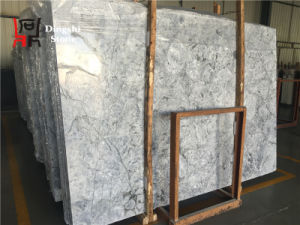 Chinese Stone Slabs Origin Prague Grey Marble for Flooring/Wall Cladding