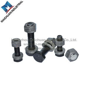 Stainless Steel/Square/ T Head Bolt with Hex Nut and Washer pictures & photos