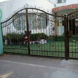 Chinese New Mondern Cheap Wrought Iron Security Gates Galvanized Power Coating Steel Pipes Fence pictures & photos
