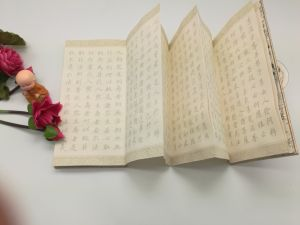 High Quality Accordion Folding Book (YY-A0001) pictures & photos