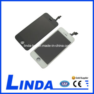 Mobile Phone LCD for iPhone 5s LCD Screen pictures & photos