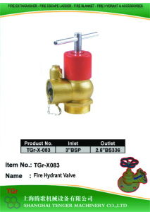 "Pressure Reduce Angle Hydrant Valve: 3""Bsp==2-1/2""BS336 pictures & photos"