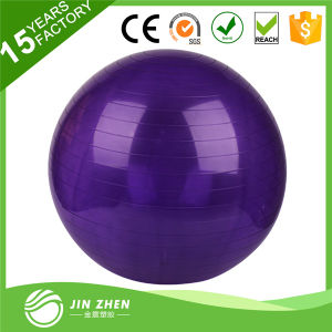Transparent Yoga Ball Gym Ball for Exercise Ball