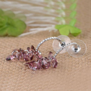 Wholesale High Quallity Fashion Hook Design Garnet Ruby Drop Earring Jewelry pictures & photos