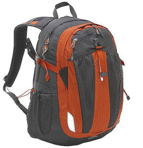 School Daily Sports Rucksack Knapsack Backpack pictures & photos