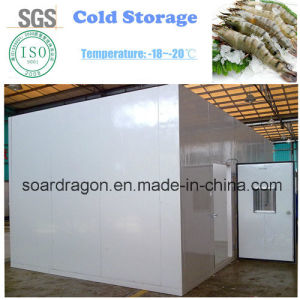 Prefab Polyurethane Cold Storage to Store Frozen Prawns pictures & photos