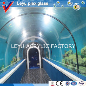 Acrylic Tunnel with Various Radian in Aquariums pictures & photos